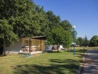Детски лагер в Шкорпилавци