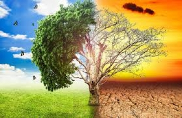Климат и температури
